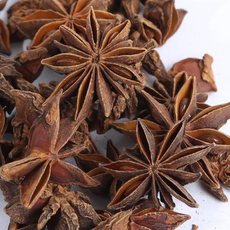 Badiane (anis étoilée) BIO - fruit 50g