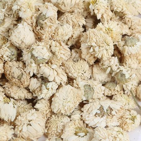 Camomille romaine - capitule floral 50g